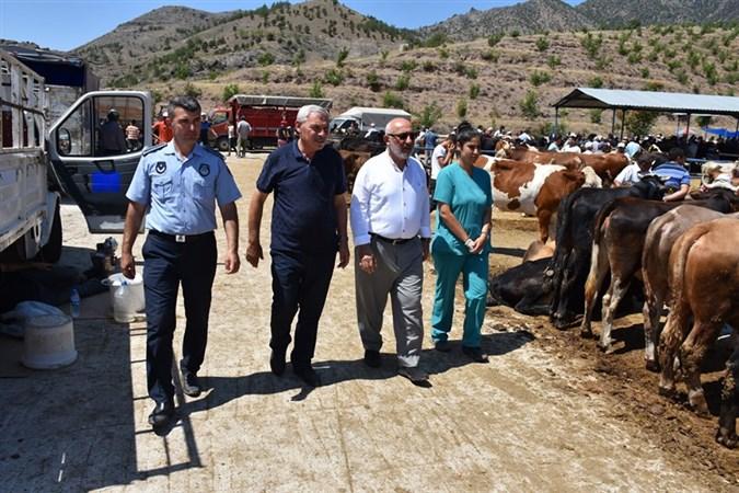 Başkan Yardımcısı Çoban, Canlı Hayvan Pazarında İncelemelerde Bulundu