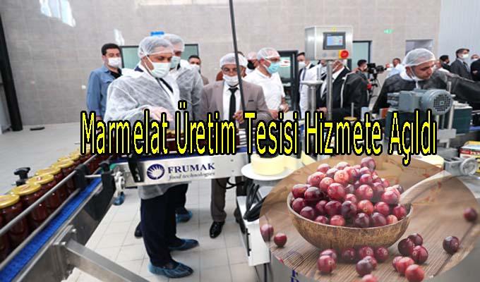 Marmelat Üretim Tesisi Hizmete Girdi