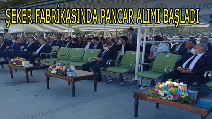 ŞEKER FABRİKASINDA PANCAR ALIMI