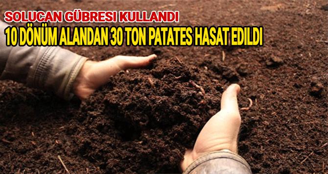 Solucan Gübresi Sayesinde 10 Dönüm Alandan 30 Ton Patatesi Hasat Edildi