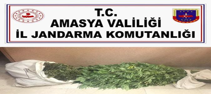 Amasya İl Jandarma Komutanlığı'ndan Uyuşturucu Operasyonu