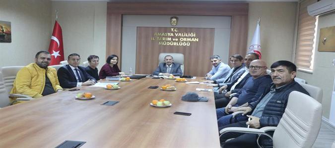 Amasya Soğan Üreticileri ile Değerlendirme Toplantısı Düzenlendi