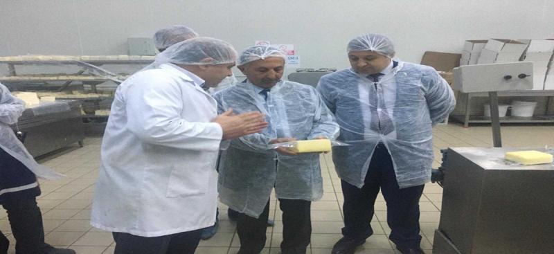 Amasya ve İlçelerinde Ürün Bazlı Gıda Denetimleri Gerçekleştirildi