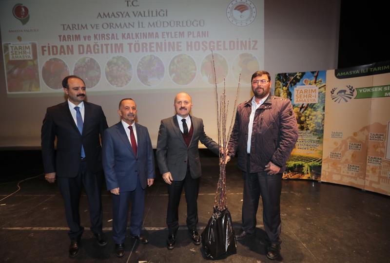 Amasya'mızın Geleceği Meyve Fidanları Sahiplerine Ulaştı