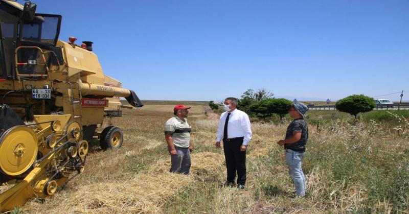 Başkan Kargı, Arpa Hasadı Yapan Çiftçileri Ziyaret Etti