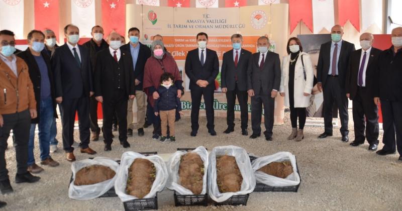 'Çilek Fidesi ve Malç Naylonu Teslim Programı' Gerçekleştirildi