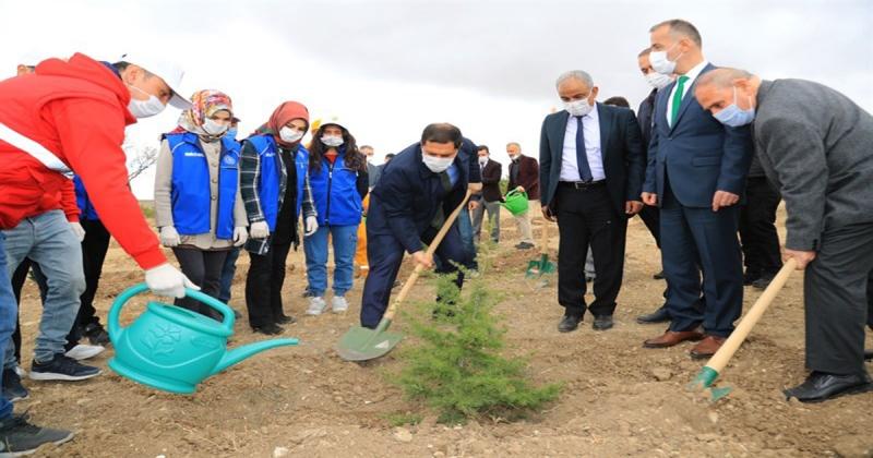 'Geleceğe Nefes, Dünyaya Nefes' İçin Amasya'da İlk Fidanı Toprakla Buluştu