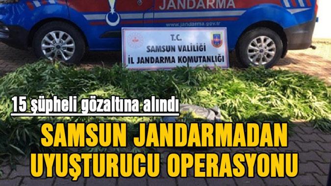Jandarma'dan uyuşturucuya 15 gözaltı