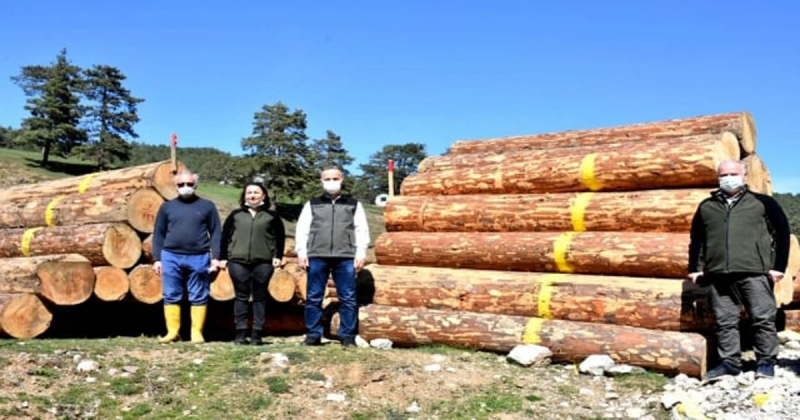 Oflu; 'Vezirköprü Orman İşletme Müdürlüğümüz orman emvali satışında kırılmadık rekor bırakmadı'