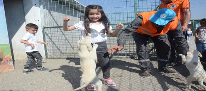 Öğrenciler Suluova Hayvan Rehabilitasyon Merkezini Ziyaret Etti