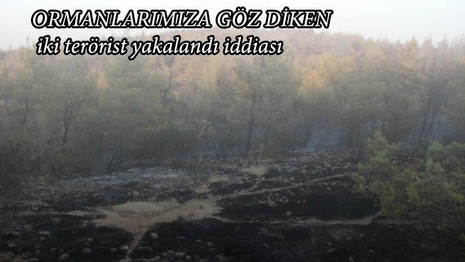 Ormanlarımıza Göz Diken İki terörist yakalandı iddiası