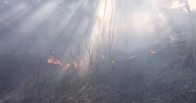 Ormanlık Alanda Yangın Meydana Geldi