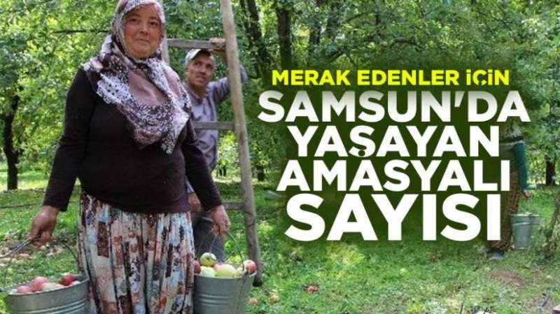 Samsun'da yaşayan Amasyalı sayısı?