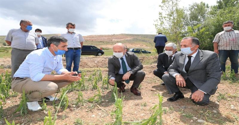 Vali Varol; 'Devletimiz tüm imkanları ile zarar gören çiftçilerimizin yanındadır.'