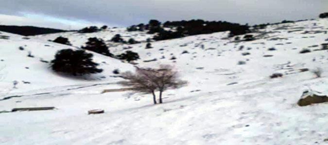 Yılın ilk Kar'ı Yağdı