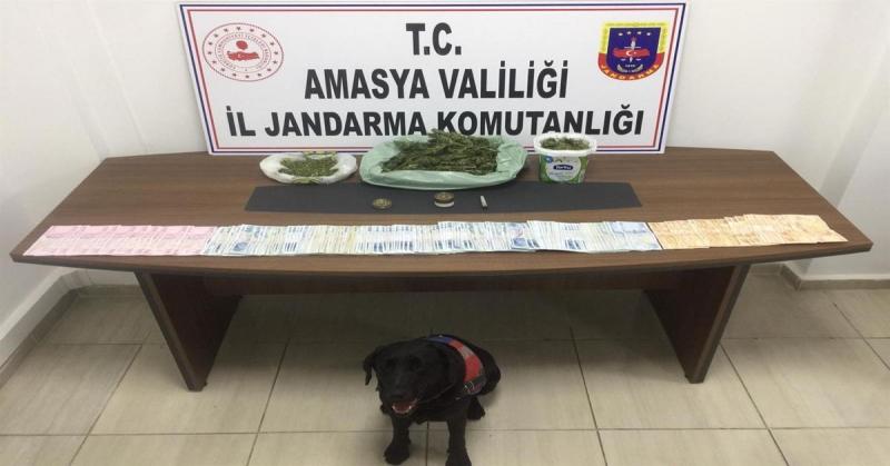 Amasya Jandarma'dan Uyuşturucu Operasyonu