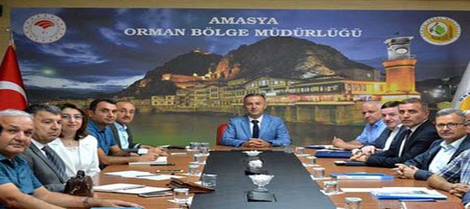 Amasya Orman Bölge Müdürü Halil Oflu Başkanlığında Şube Müdürleri Toplantısı Yapıldı