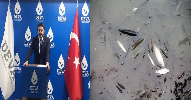 Başkan Sözen, Balık Ölümleriyle İlgili Açıklamalarda Bulundu