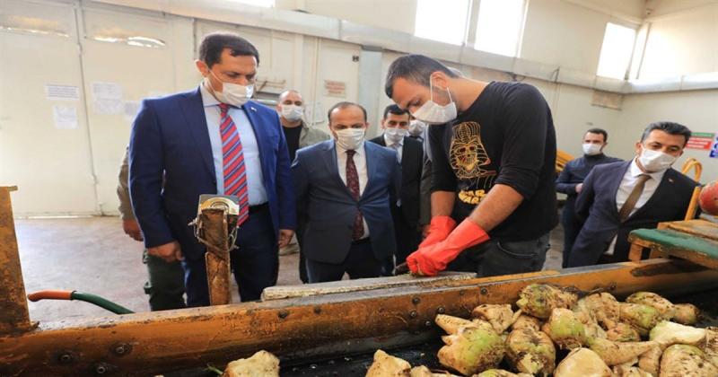 Vali MASATLI, Amasya Suluova Şeker Fabrikasında İncelemelerde bulundu